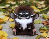 Inari Fox: Shaman dark nose